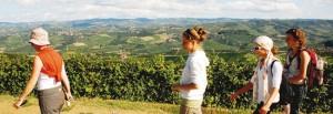 Turismo estivo nelle Langhe e nel Roero: buoni segnali