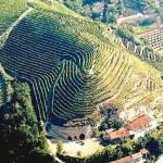 """Unesco, online il primo """"sì"""" alla candidatura di Langhe-Roero e Monferrato"""
