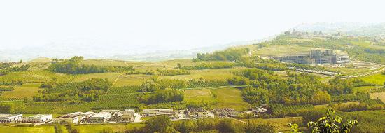 Verdi colline a Verduno