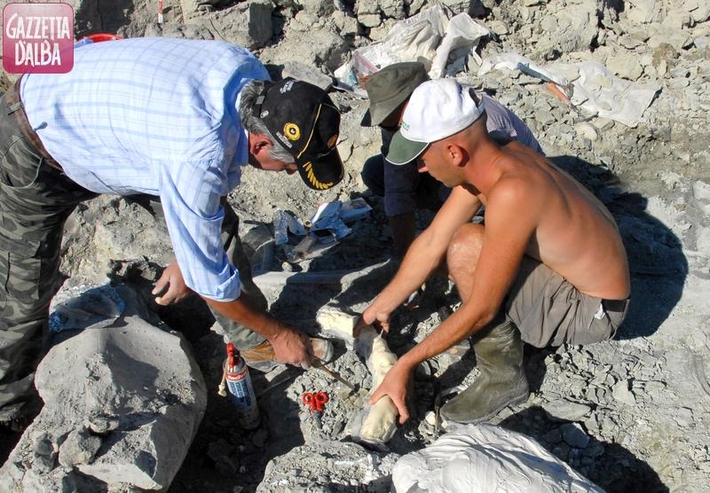 Lo scavo nel greto del Tanaro per recuperare lo scheletro di mastodonte.