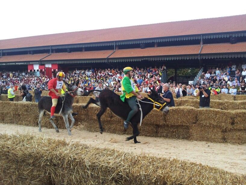 moretta vince palio 2012