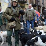 A Monticello, una sfilata di cani… per i gatti