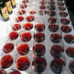 Domenica, ad Alba, sarà Festa del vino
