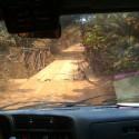 Ponte in Guinea 1