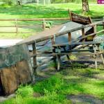 Bo (Pdl): Si faccia qualcosa per salvare il parco Tanaro dal degrado