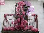 Cherasco in rosa 6