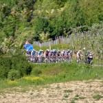 Ciclismo: sopralluogo per la tappa Barbaresco-Barolo