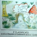 Sommariva Bosco 3 classificato 1