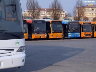 """""""Granda Bus no limits"""": in tre settimane quasi 2.000 abbonamenti"""