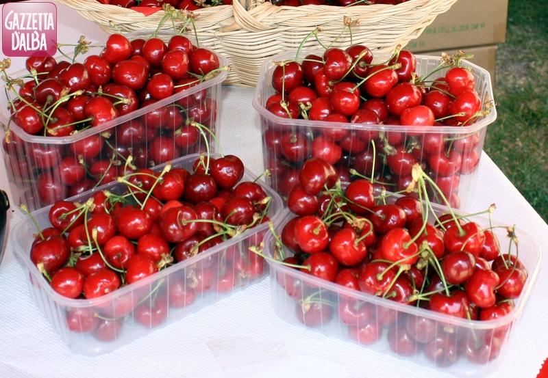 A Dogliani è l'ora dell'antica fiera della ciliegia