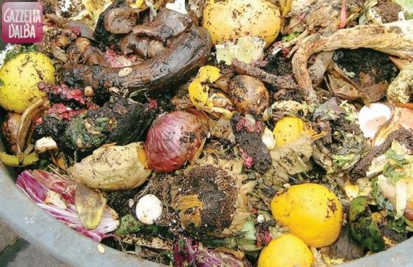 Rifiuti: in alcune zone di Bra cambia la raccolta dell'organico