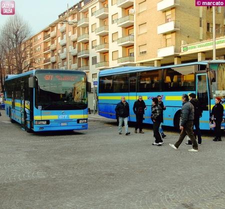 Autobus per Alba gratuito per chi ha più di 65 anni