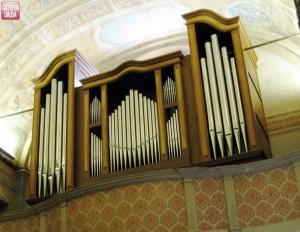 niella belbo organo