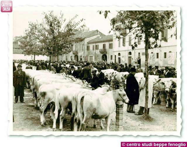 Il mercato dei bovini ad Alba anni Quaranta.