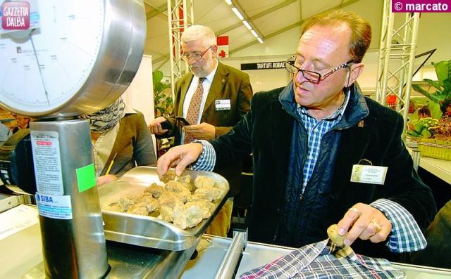 mercato tartufo