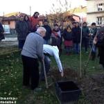 Un albero per ricordare Giorgio Cavallo