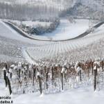 Meteo: mercoledì 29 gennaio nevicate diffuse anche sulla pianura cuneese