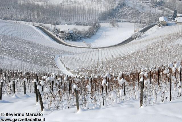 Meteo: attesi 20-30 cm di neve sulle Langhe nella notte tra venerdì e sabato