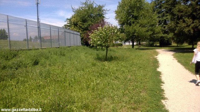 degrado-parco-san-cassiano-alba-luglio2014 (4)
