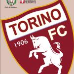 Dal 13 al 20 agosto il Torino calcio in ritiro a Mondovì