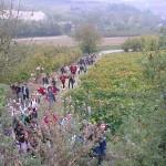 """Scuola, gli studenti del """"Govone"""" sui sentieri di Fenoglio"""