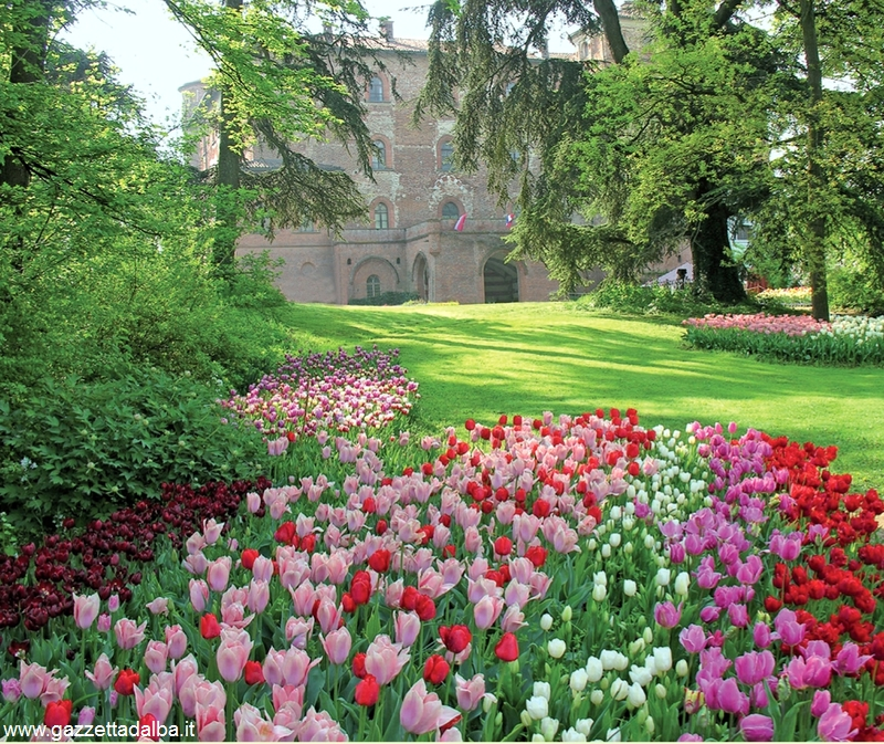 Pralormo: passeggiate virtuali al castello per ammirare i tulipani fioriti