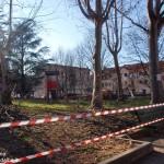 Iniziata la  potatura degli alberi nel giardino Maestri del lavoro di corso Piave