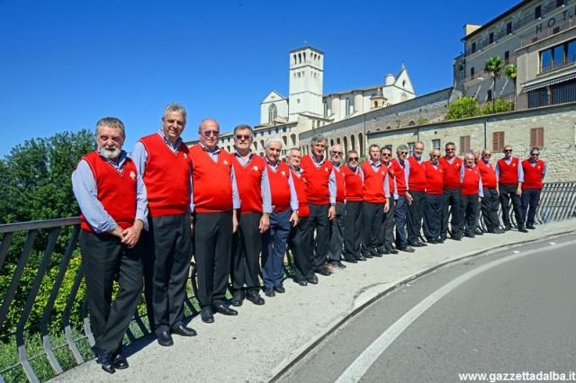 coro-stella-alpina