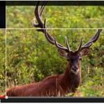 Tutti i parchi del Piemonte in un video a Expo