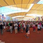 Expo, un milione di potenziali turisti per le colline Unesco