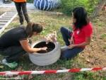 Festa canile Gretel (1)