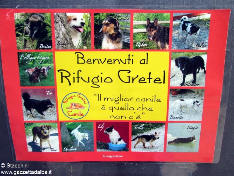 Festa canile Gretel (16)
