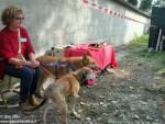 Festa canile Gretel (4)