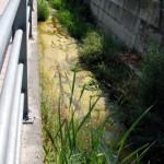 Alba: il rio Misureto verrà pulito