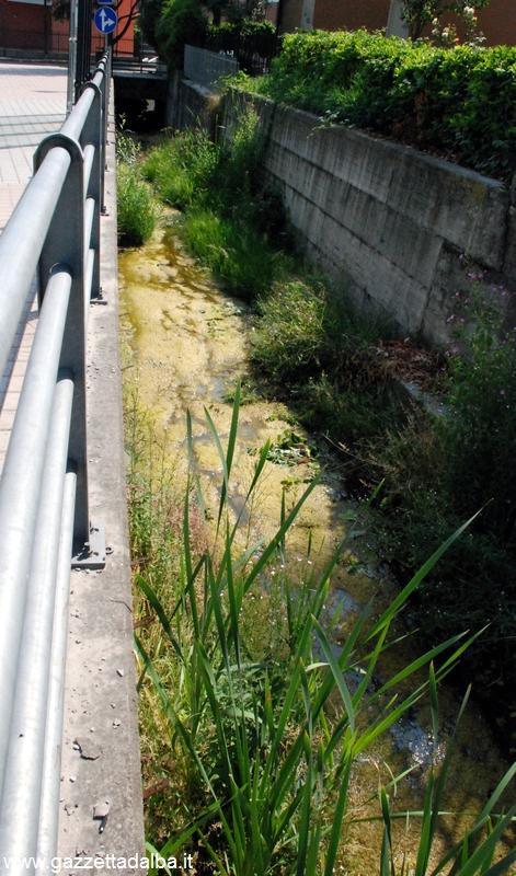24 ALBA rio Misureto sporco