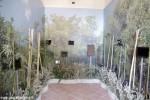 Museo paesaggio Magliano (9)