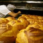 Il senatore Mino Taricco propone una legge sul pane fresco