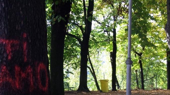 Nuove telecamere per vigilare all'interno dei giardini della Rocca