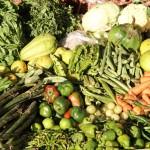 Il Mercato della terra di Slow Food torna il giorno di Pasquetta