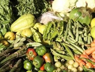 La Fondazione agroalimentare e l'Its si presentano 1