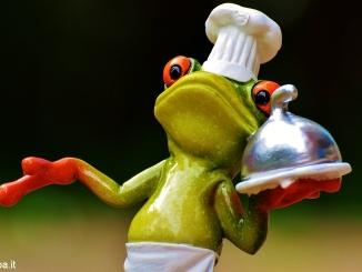 Presentato il primo Festival della rana