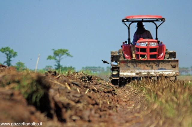 trattore campo agricoltura