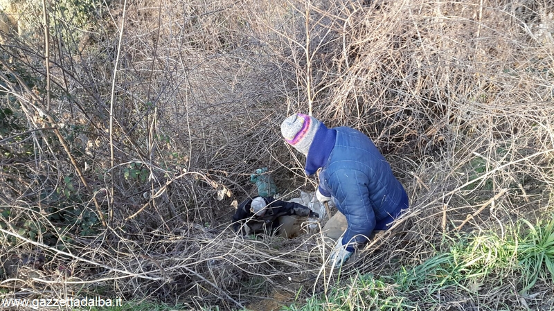 Canale pulizia sentieri  gennaio 2016 (4)