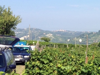 Caporalato nelle vigne: denunciato un macedone, 144mila euro di sanzioni