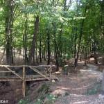 Parco Roero più verde grazie a una donazione