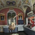 Musei di Bra: 12.000 visitatori nel 2015