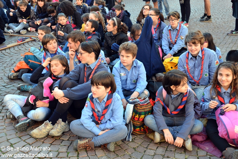 alba scout thinking 05