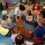 L'asilo nido L'Ippocastano propone pet therapy e yoga