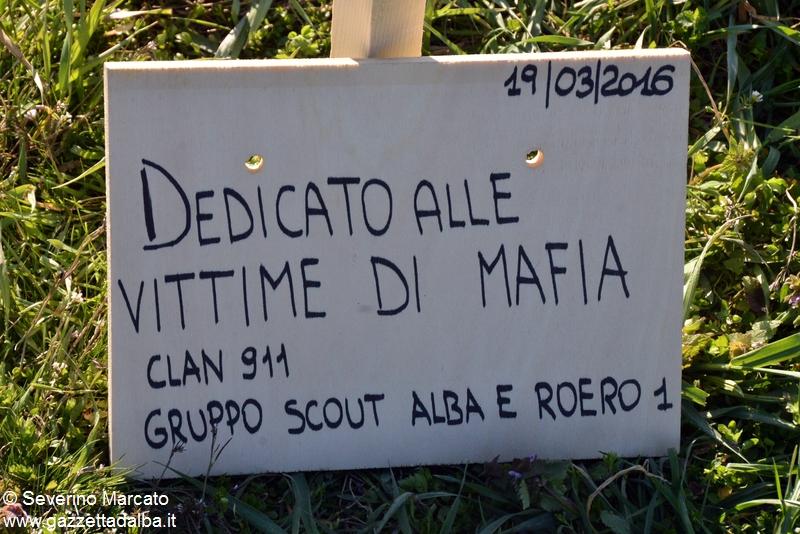 scout antimafia (10)