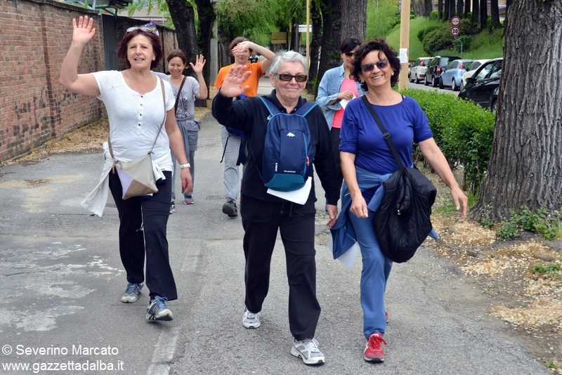 alba doi pass avis 2016-55